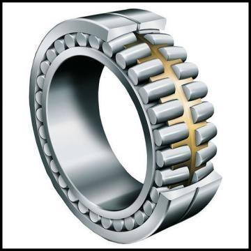 15 mm x 42 mm x 13 mm  ISB SS 6302-2RS Deep groove ball bearing