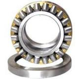 INA NSK High Quality Needle Roller Bearing Nkia5905